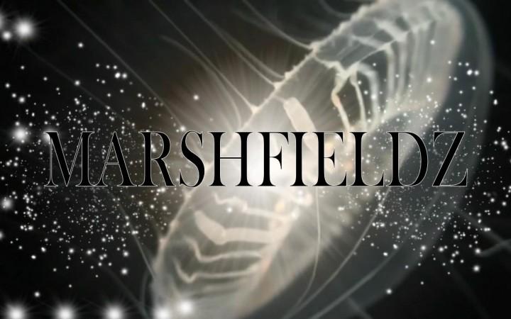 """Marshfieldz – """"Windows"""" & """"Amy"""""""