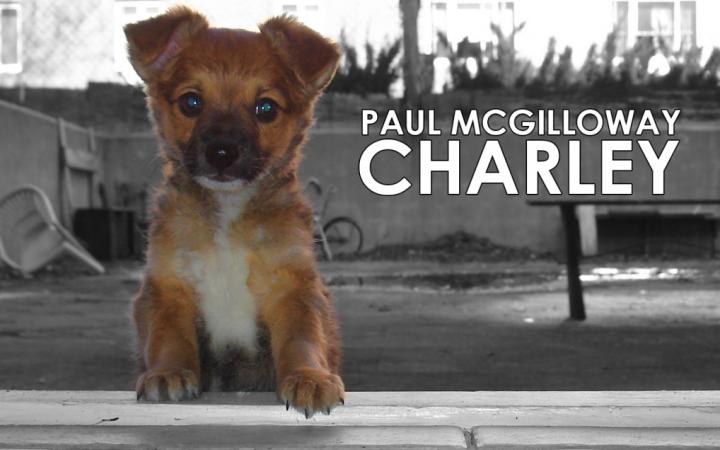"Paul McGilloway – ""Charley"""