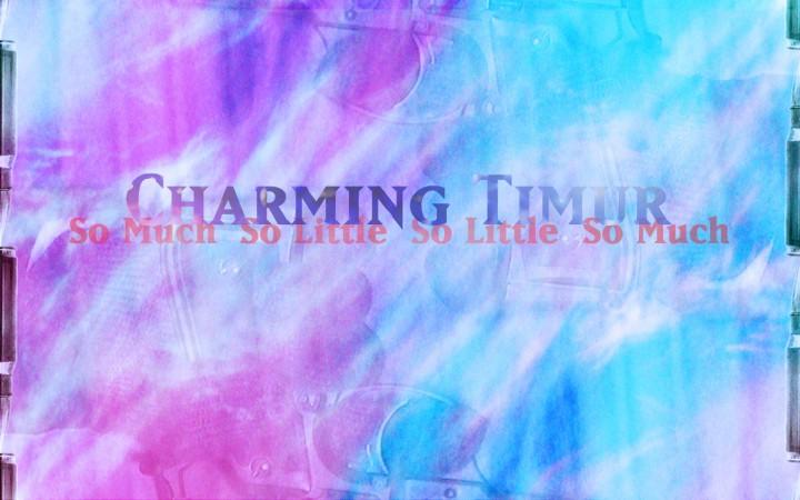 Charming Timur – So Much So Little So Little So Much
