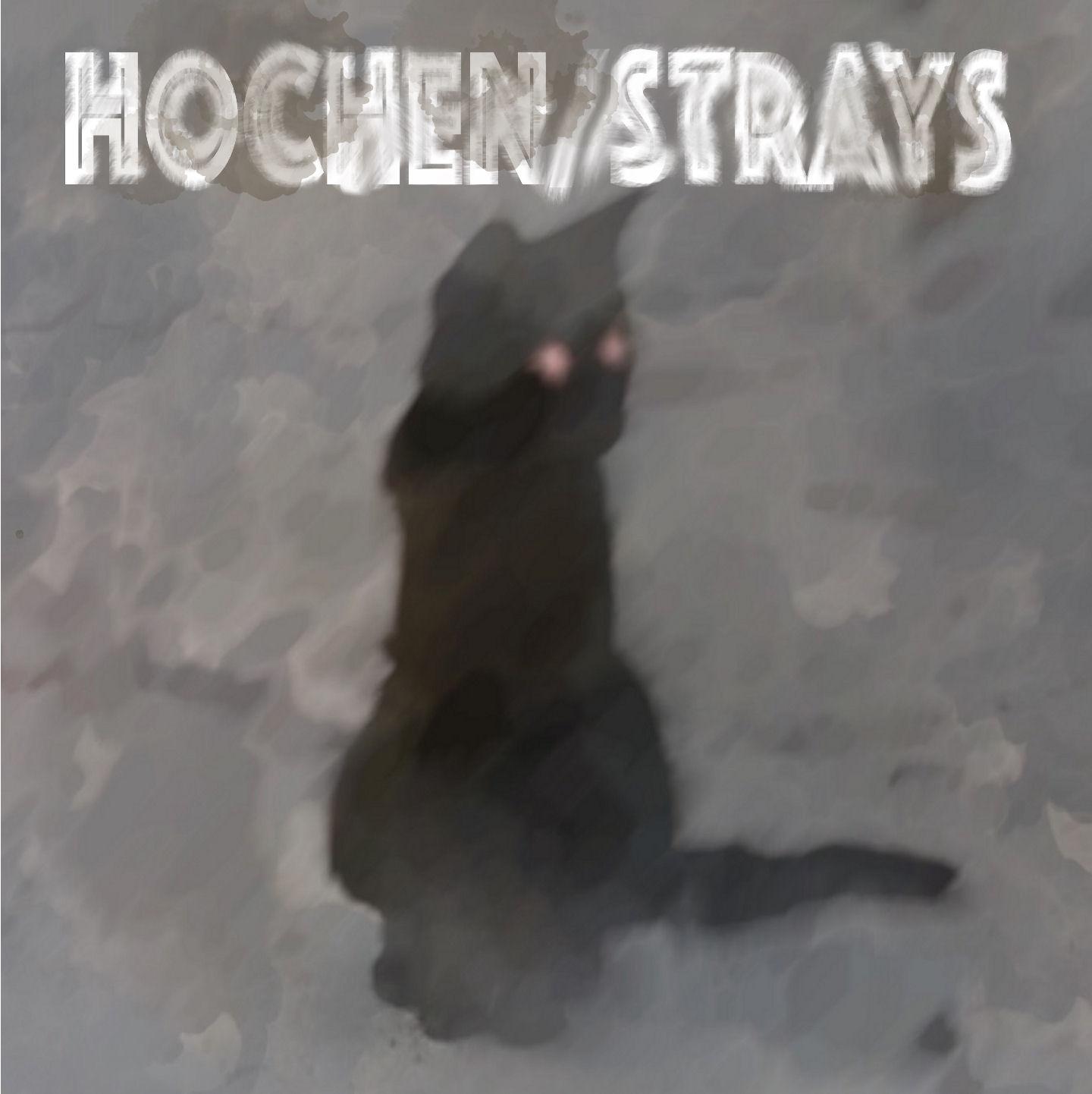 Hochen – Strays