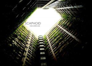 Scaphoid – Dies Mercurii