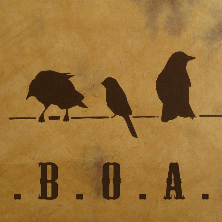 Birds Over Arkansas – Behind The Lights