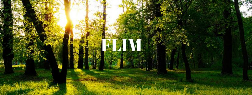 Flim – Positive Imagination