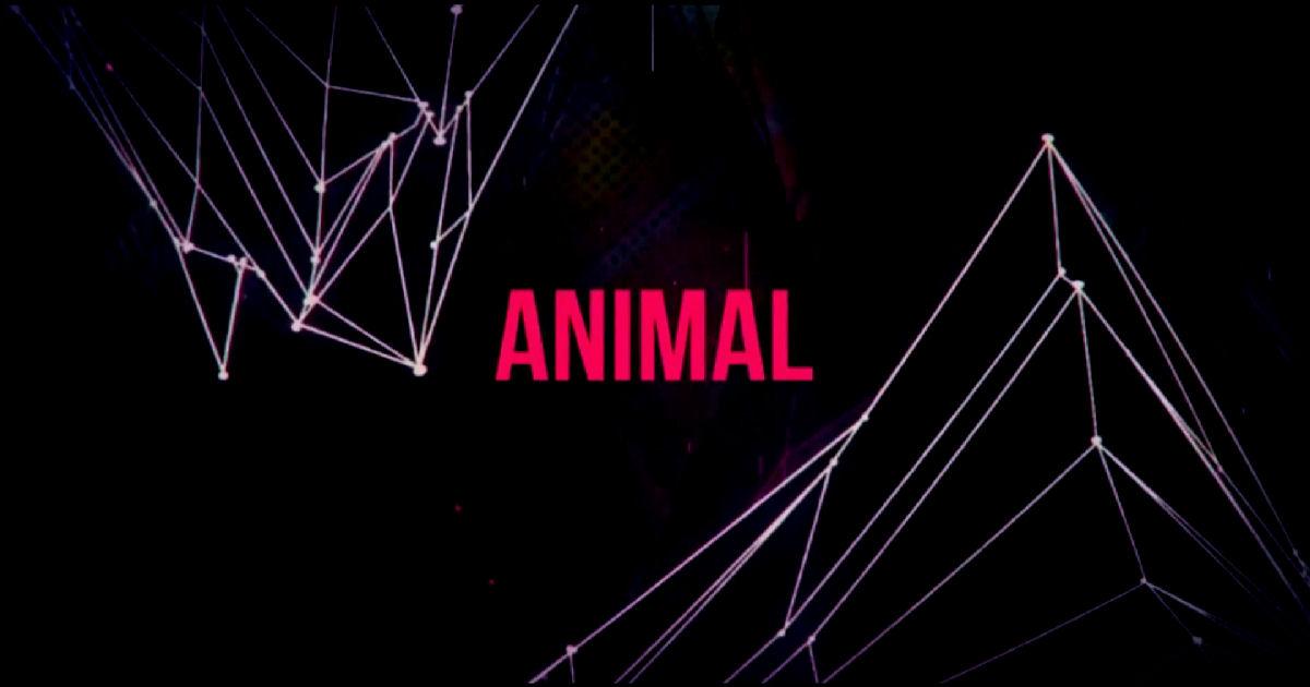 "Dyemare – ""Animal"""