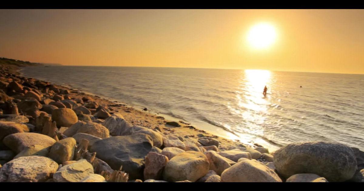 "Dr Optimiser – ""100 Steps To The Shoreline"""