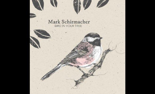 "Mark Schirmacher – ""Are You Okay?"""