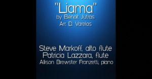 """Steve Markoff, Patricia Lazzara, Allison Brewster Franzetti – """"Liama"""""""