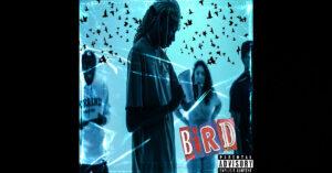 "Omari Twist - ""BIRD"""
