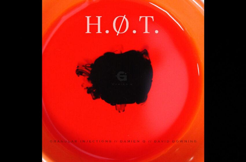 "Damien Q & Granular Injections – ""H.O.T."" feat. David Downing"