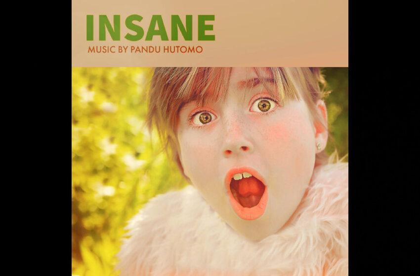 """Pandu Hutomo – """"Insane"""""""