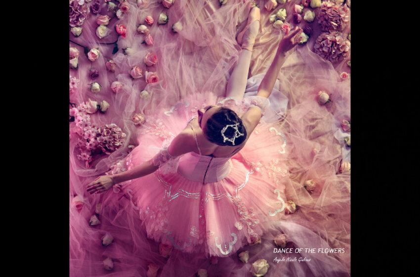"""Angelo Nicola Giuliano – """"Dance Of The Flowers"""""""
